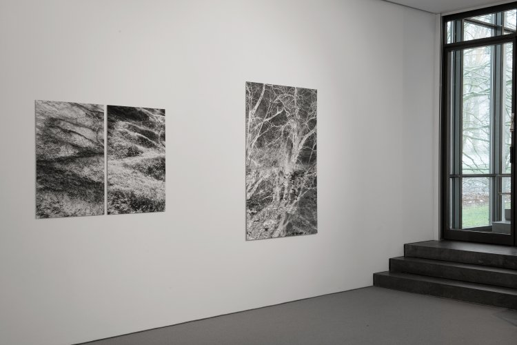 Exhibition view: Silke Grossmann, Movements on the Periphery, Ernst Barlach Haus 2017/18